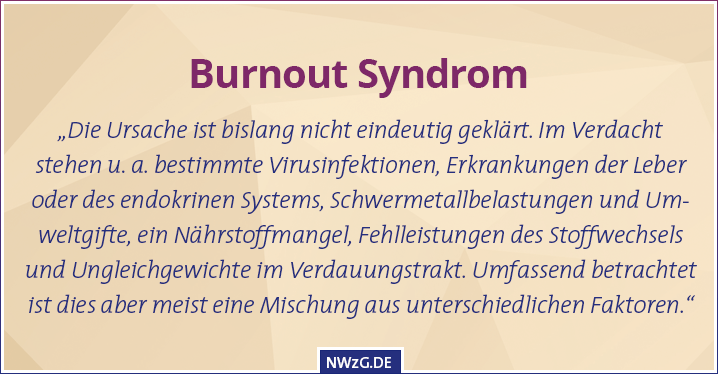 Burnout-Syndrom 2